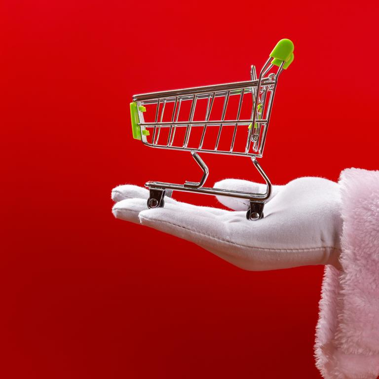 santa holding grocery cart