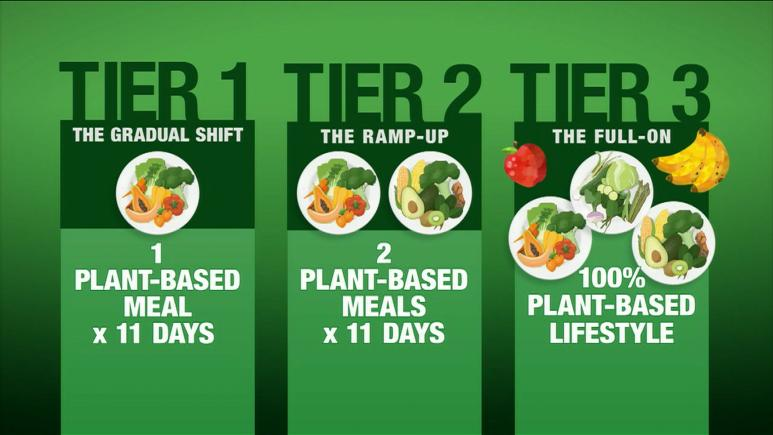 3 Tiers For Plant-Based Diet